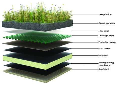 green-roof-layers2