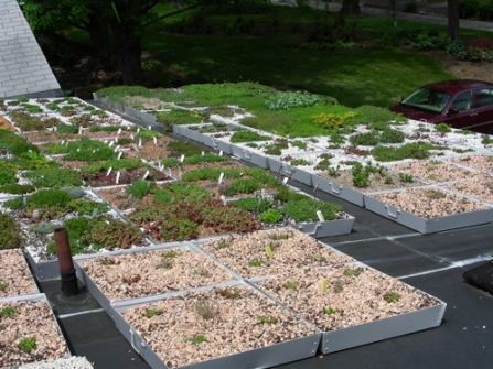Green Roof Blocks