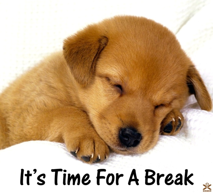 A question about taking a break from college.?