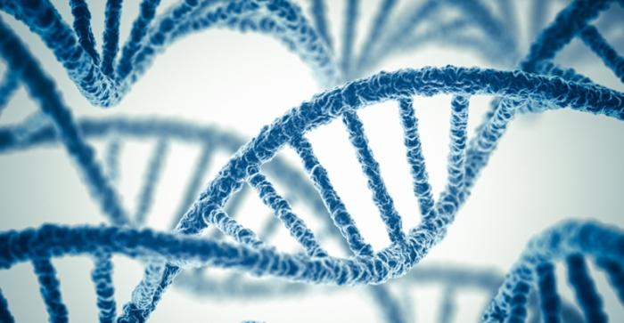 genetic-ethics1