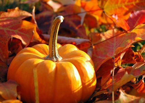 October Blog Pic